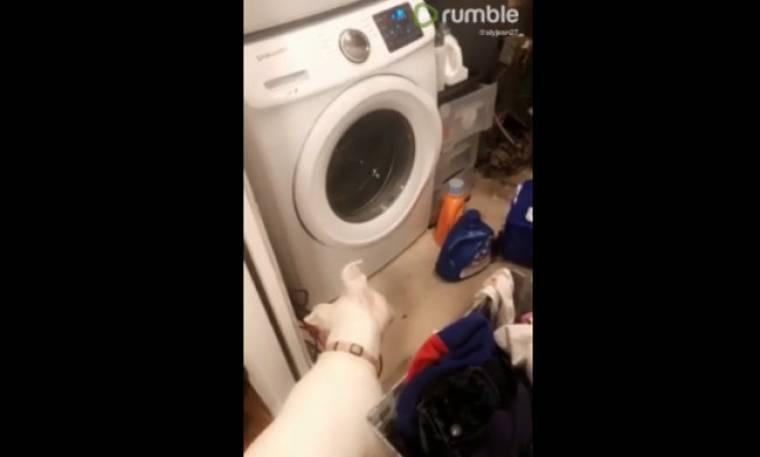 Δείτε πώς αντιδρά ένας σκύλος όταν για πρώτη φορά βλέπει πώς δουλεύει το πλυντήριο