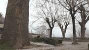 Ο Στέλιος Παρλιάρος και οι Γλυκές Αλχημείες ταξιδεύουν στη Θεσσαλία