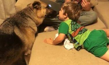 Θέλει να ταΐσει τον σκύλο και έχει βρει έναν απίστευτο τρόπο