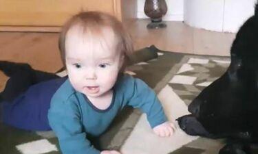 Θα λιώσετε! Δείτε τι συνέβη πριν το μωρό πάρει αυτή τη γκριμάτσα