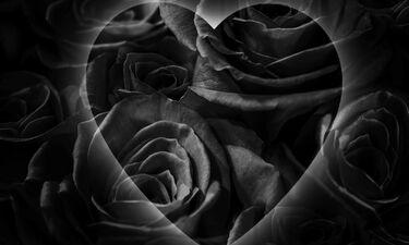 Πόσο «σκοτεινή» ψυχή έχεις;