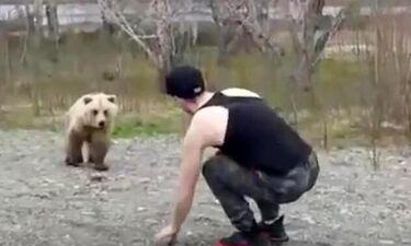 Έκανε τον μάγκα στην αρκούδα αλλά στη συνέχεια έτρεχε να σωθεί! (photos+video)
