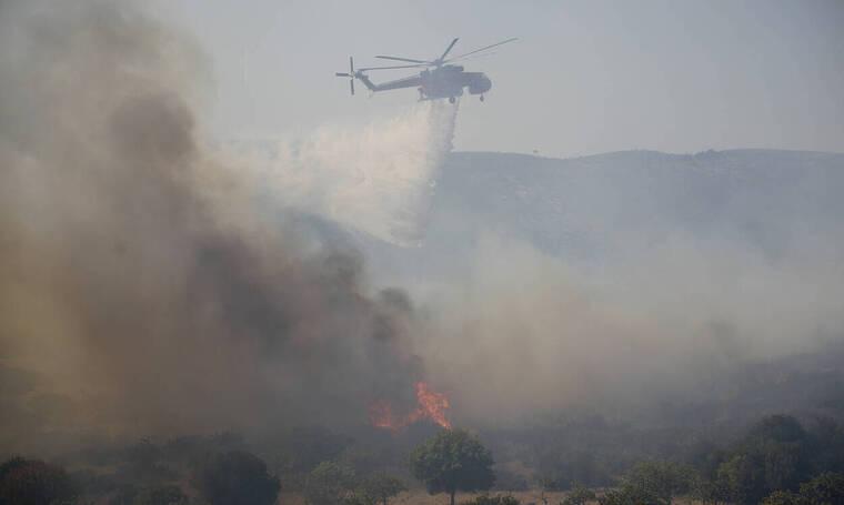 Φωτιά τώρα: Τεράστια οικολογική καταστροφή στην Ελαφόνησο - 63 πυρκαγιές μέσα σε ένα 24ώρο