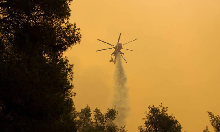 Φωτιά στην Εύβοια: Ανεξέλεγκτη η φωτιά λόγω των ισχυρών ανέμων - Εκκενώνονται δύο χωριά