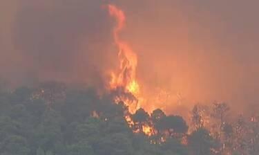 Φωτιά Εύβοια: Στις φλόγες το χωριό Μακρυμάλλη