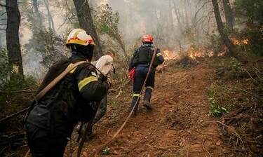 Φωτιά Εύβοια: Σε κατάσταση έκτακτης ανάγκης η Εύβοια