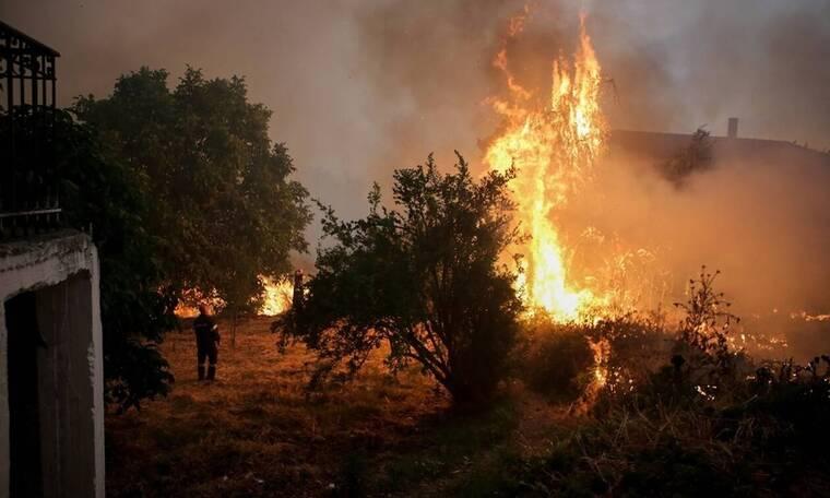 Φωτιά Εύβοια: Εικόνες «Αποκάλυψης» στα χωριά Μακρυμάλλη και Kοντοδεσπότι (vids)