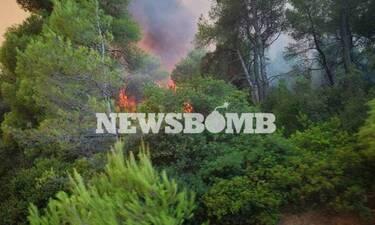 Εύβοια: Η εικόνα από τη φωτιά που προκαλεί ανατριχίλα