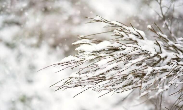Μερομήνια: Έρχεται βαρύς χειμώνας! Πότε θα χιονίσει – Τι καιρό θα κάνει τα Χριστούγεννα