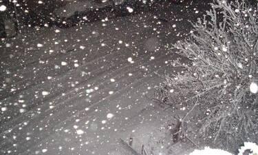 Μερομήνια 2019-2020: Φέρνουν βαρυχειμωνιά και γενικευμένες χιονοπτώσεις (video)