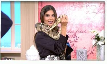 Η Σταματίνα Τσιμτσιλή διεκδικεί μία θέση στο GNTM- Φωτογραφήθηκε με φίδια! (Video)