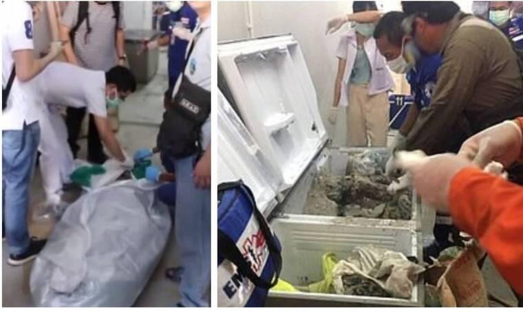 Υπόθεση-σοκ: Εκατομμυριούχος βρέθηκε τσιμεντωμένη στον καταψύκτη της (pics)