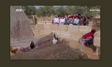 GNTM: «Κλάμα» με τη δοκιμασία αποχώρησης! Η αναμέτρηση των κοριτσιών με τα… πτηνά! (Pics-Vid)