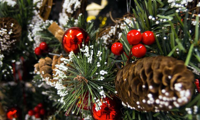 Πάρτε ιδέες από τους celebrities! Ποιος στόλισε καλύτερα το Χριστουγεννιάτικο δέντρο φέτος; (photos)