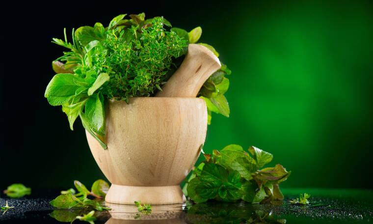 Αδυνάτισμα: Με ποια βότανα θα επιταχύνετε το αποτέλεσμα (εικόνες)