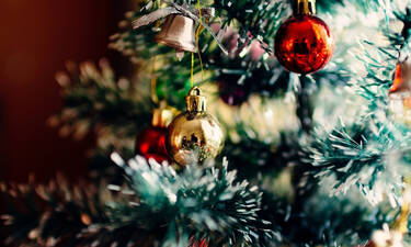 Γύρισε σπίτι της και «πάγωσε» με αυτό που είδε στο χριστουγεννιάτικο δέντρο (photos)