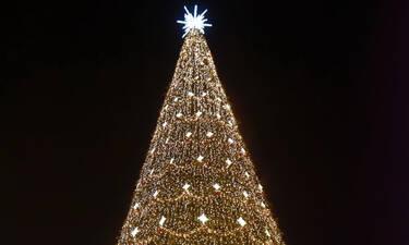 Βρήκαμε το μεγαλύτερο χριστουγεννιάτικο δέντρο του κόσμου που μπήκε στο ρεκόρ Γκίνες για το 2019