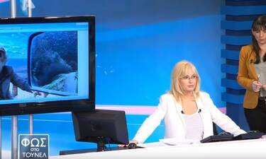 Φως στο τούνελ: Σοκαριστικό ντοκουμέντο για την υπόθεση δολοφονίας του Μάριου Παπαγεωργίου(Pics-Vid)