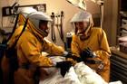 Οι σινε-πανδημίες που σχεδόν… εξαφάνισαν την ανθρωπότητα (pix - vids)