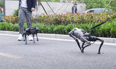 Αν φοβάσαι τα ρομπότ καλύτερα να μην το δεις