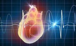 Τι δείχνουν οι παλμοί της καρδιάς σας