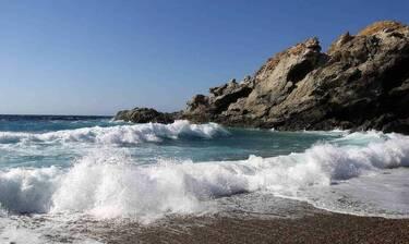 Ξέβρασε «τέρας» η θάλασσα - Έπαθαν πλάκα με αυτό που αντίκρισαν