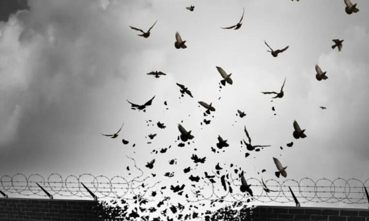 Σήμερα 06/07: Η αλήθεια απελευθερώνει