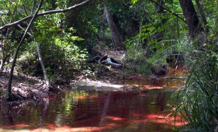Κόκκινο Ποτάμι: Η απόλυτη αποθέωση στο Twitter για το τραγικό φινάλε! (photos)