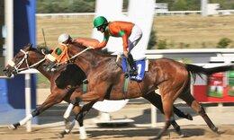 Markopoulo Park: Τρεις νικητές στο ΣΚΟΡ 6 κέρδισαν από 29.610,75 ευρώ