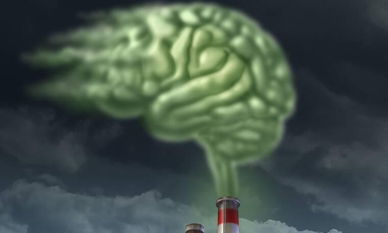Η τροφή που αντιστρέφει τη βλάβη που προκαλεί η ατμοσφαιρική ρύπανση στον εγκέφαλο