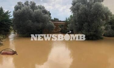 Πλημμύρες Εύβοια - Χαρδαλιάς: 5 νεκροί από την κακοκαιρία και 2 αγνοούμενοι
