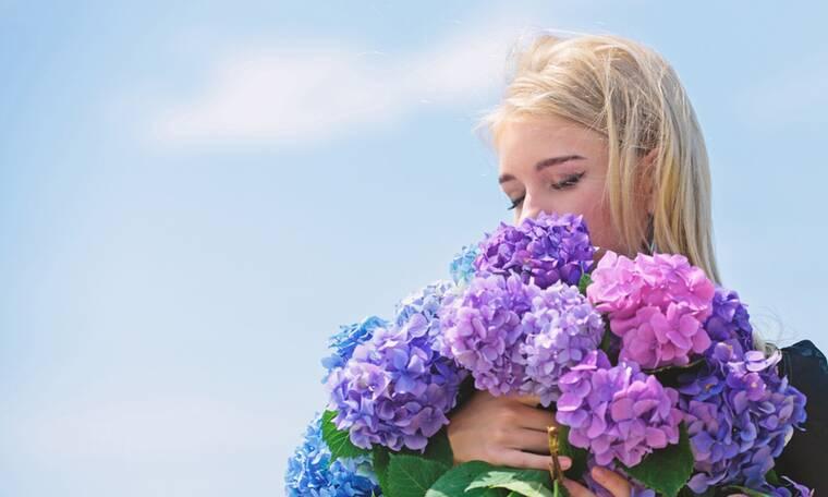 Αλλεργίες: 6 αιτίες σε εικόνες
