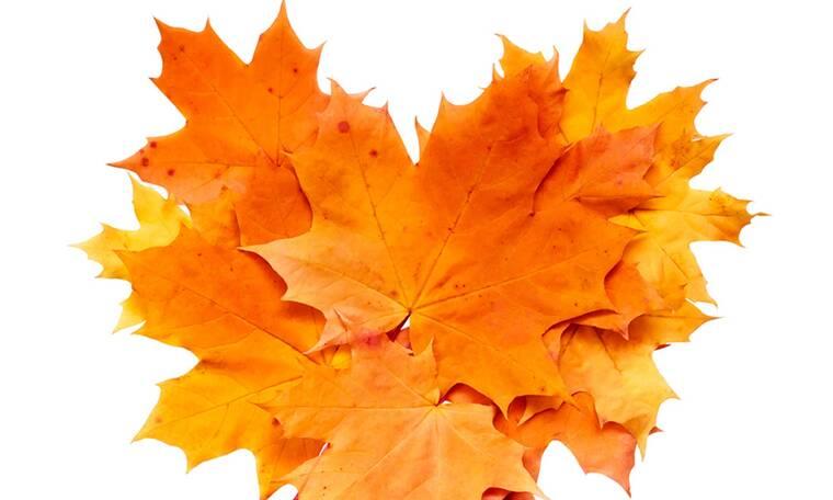 Εβδομαδιαίες Ερωτικές Προβλέψεις 19/10-25/10: Καταστάσεις για γέλια και για κλάματα