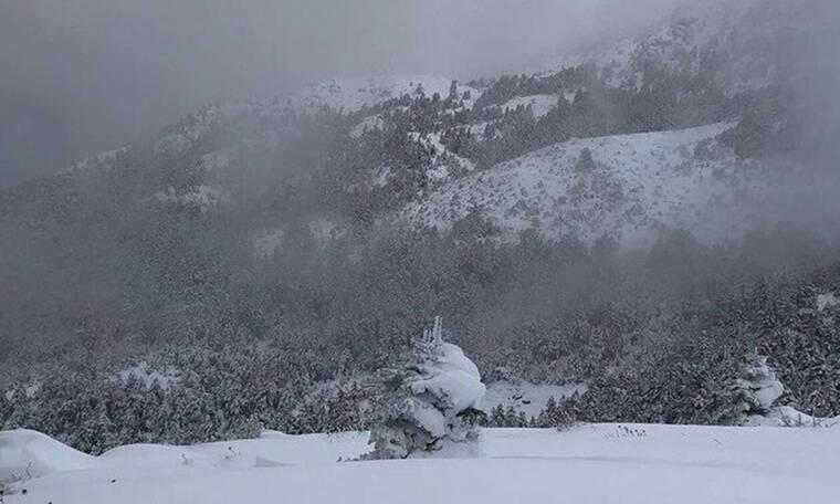 Καιρός: Έπεσαν τα πρώτα χιόνια στην χώρα - Δείτε πού το «έστρωσε»