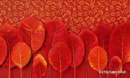 Εβδομαδιαίες προβλέψεις 25/10 - 31/10: Μην καμαρώνεις στην αρχή, προτού να δεις το τέλος!