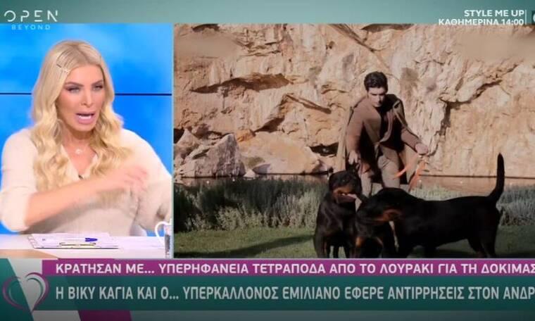 Κατερίνα Καινούργιου: Η επίθεση σκύλου, το νοσοκομείο και τα ράμματα (Video)