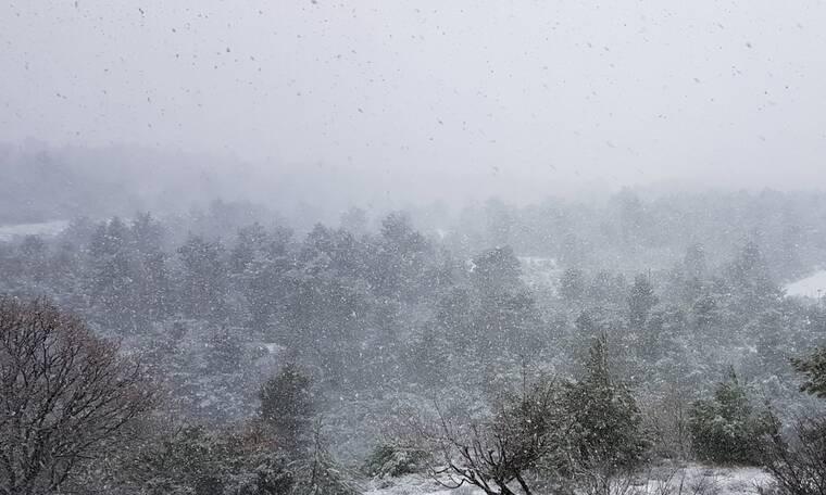 Κακοκαιρία «Λέανδρος»: Πώς θα κινηθεί η ψυχρή εισβολή - Ποιες περιοχές θα πλήξουν χιόνια και παγετός