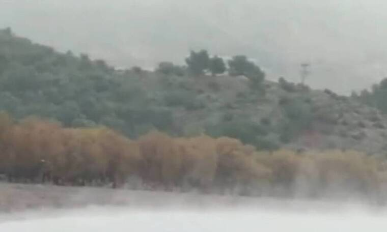 Κακοκαιρία «Λέανδρος»: Βούτηξαν στη θάλασσα εν μέσω χιονιά (video)