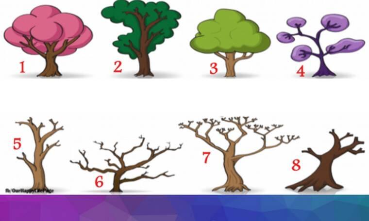 Διάλεξε 1 από τα 8 δέντρα και μάθε τι φανερώνει για σένα