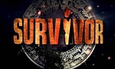 Survivor: Σάρωσε σε νούμερα τηλεθέασης - Τι έκαναν «Μέλισσες» και MasterChef;