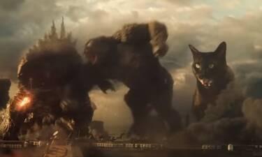 Το βίντεο με τη γάτα εναντίον του Γκοτζίλα είναι ό,τι καλύτερο κυκλοφορεί! (vid)