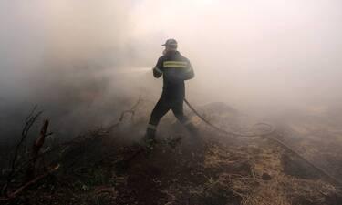 Φωτιά Άνδρος – Ρεπορτάζ Newsbomb.gr: Εκκενώνεται οικισμός – Σπεύδει η ΕΜΑΚ, αεροσκάφη και ελικόπτερο
