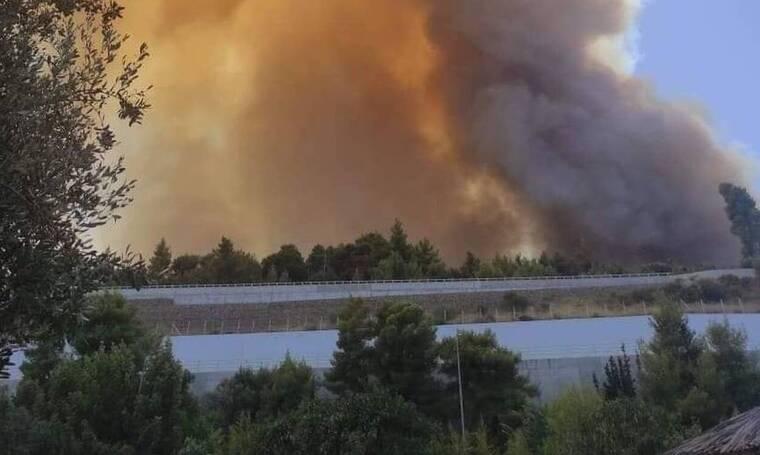 Φωτιά στην Αχαΐα: Δραματική η κατάσταση - Καίγονται σπίτια, εκκενώνονται οικισμοί