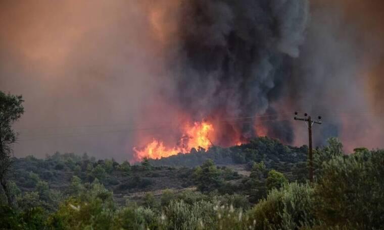 Θεσπρωτία: Εισήλθε σε ελληνικό έδαφος η φωτιά από την Αλβανία