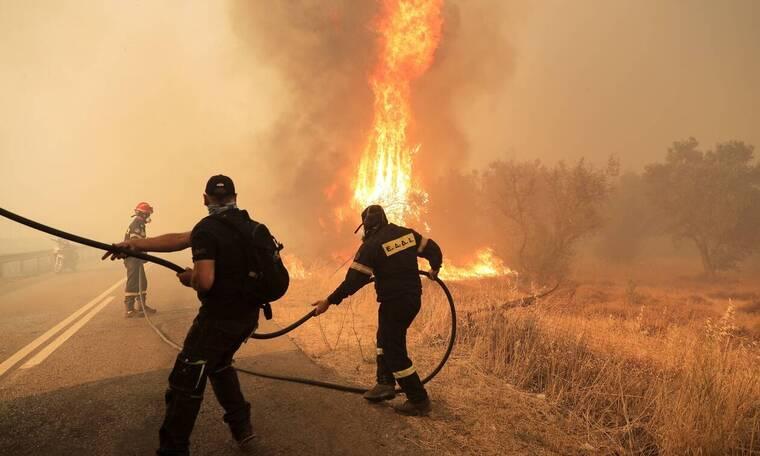 Μάχη της Πυροσβεστικής σε Εύβοια, Αρχαία Ολυμπία και Χαλκιδική - Τα κρίσιμα μέτωπα της φωτιάς