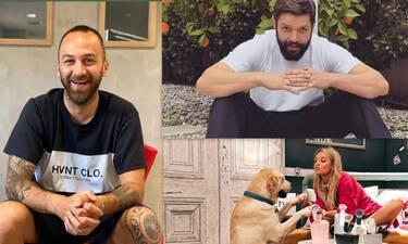 Αναγνωστόπουλος, Ουίλιαμς, Βούλγαρης: Μαζική κινητοποίηση για να σωθούν τα ζώα στη Βαρυμπόμπη!