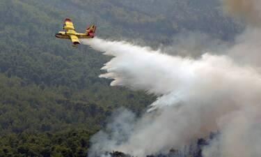 Συναγερμός στα Βίλια: Η φωτιά πλησιάζει απειλητικά τον οικισμό