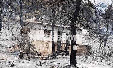 Φωτιά στα Βίλια: Προς την Πέραμο κινείται το μέτωπο - Ανησυχία για την ενίσχυση των ανέμων